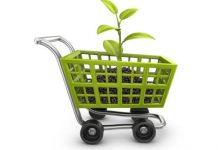 Green Public Procurement, i nuovi criteri minimi per gli appalti della PA