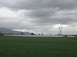 FEDI Impianti: nuovo impianto fotovoltaico da 993,6 kWp in provincia di Pisa
