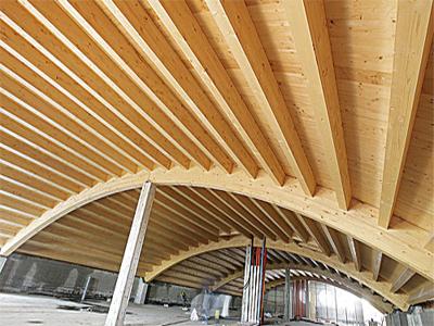 Linee guida per utilizzo del legno strutturale dal CSLLPP