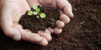 Difesa del suolo, solo con gli investimenti si può creare sviluppo