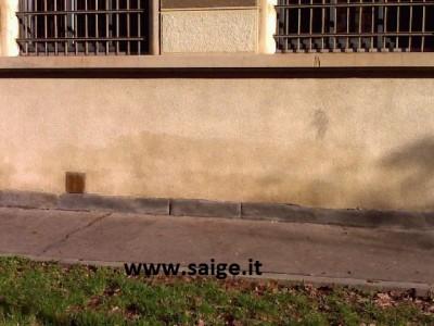 muro umido