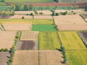 IMU terreni agricoli: