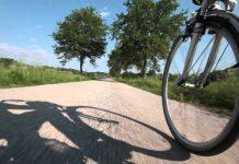 mobilità sostenibile green