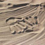 Disastri ambientali: calcestruzzo, quanta sabbia ci costa?