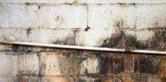 L'umidità negli edifici spiegata in modo semplice