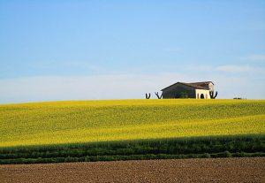 la giornata del consumo di suolo a cosa serve?