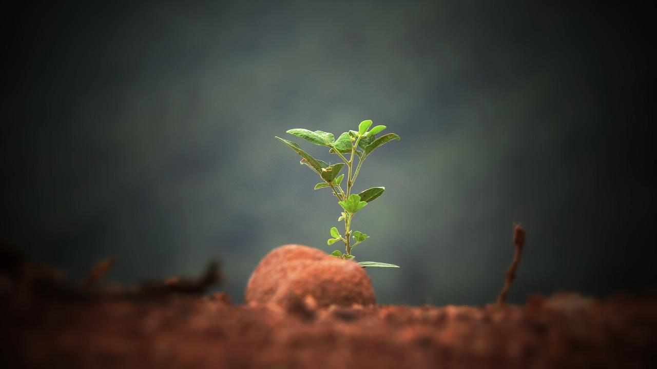 uso sostenibile suolo corso