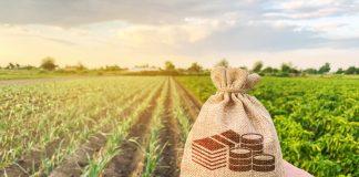 compravendita terreno agricolo