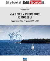 VIA e VAS - Procedure e Modelli